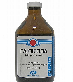5% Glucoselösung