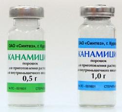 Antibiotisches Kanamycin