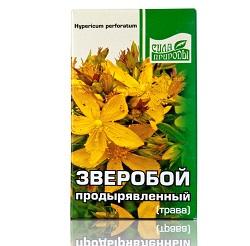 Gras Hypericum perforatum